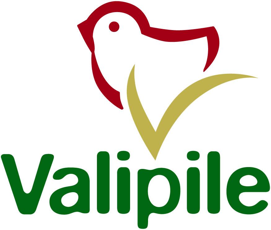 valipile_logo
